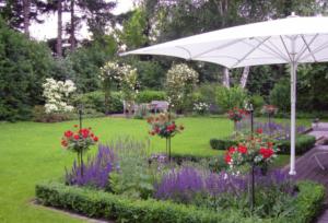Garten Schirm weiß Sonnenschirm Rosen
