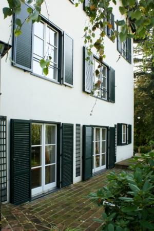 Klappladen dunkelgrün Fenster