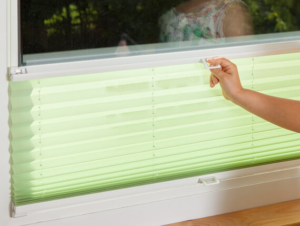 Sonnenschutz grün innen Fenster